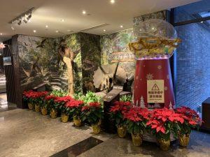 2020.11.20-12.27大板根森林溫泉酒店.水晶塔扭蛋機.耶誕市集